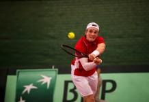Mikael Torpegaard, Davis Cup